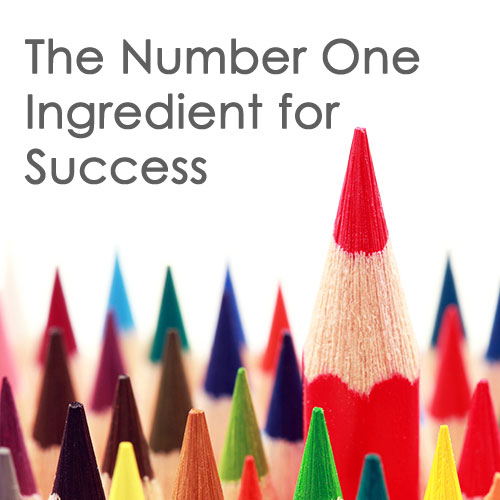 The Number One Ingredient for Success