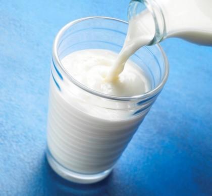 What's the Best Milk?